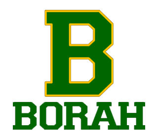 Borah High School Golf Team